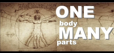 one-body-many-parts