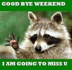 goodbyeweekend